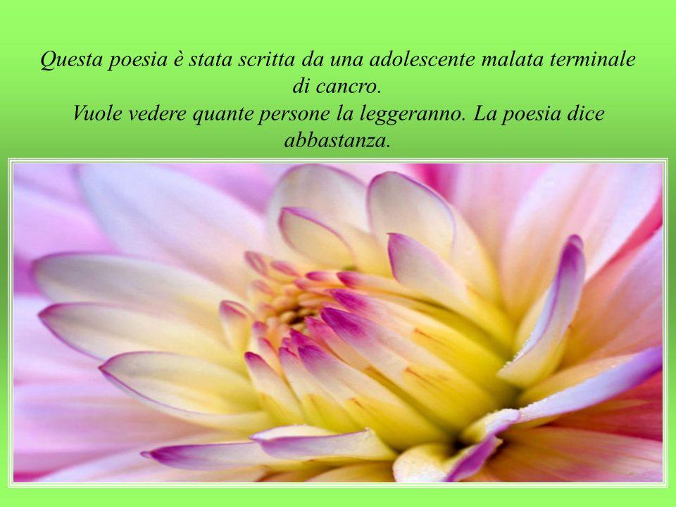 Cicognani è il direttore del dipartimento di pediatria dell' Ospedale Sant'orsola di Bologna.