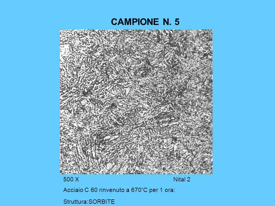 CAMPIONE N. 5 500 XNital 2 Acciaio C 60 rinvenuto a 670°C per 1 ora: Struttura:SORBITE
