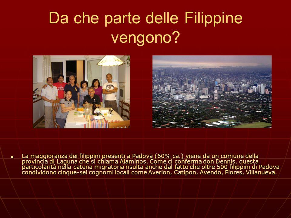 Da che parte delle Filippine vengono? La maggioranza dei filippini presenti a Padova (60% ca.) viene da un comune della provincia di Laguna che si chi