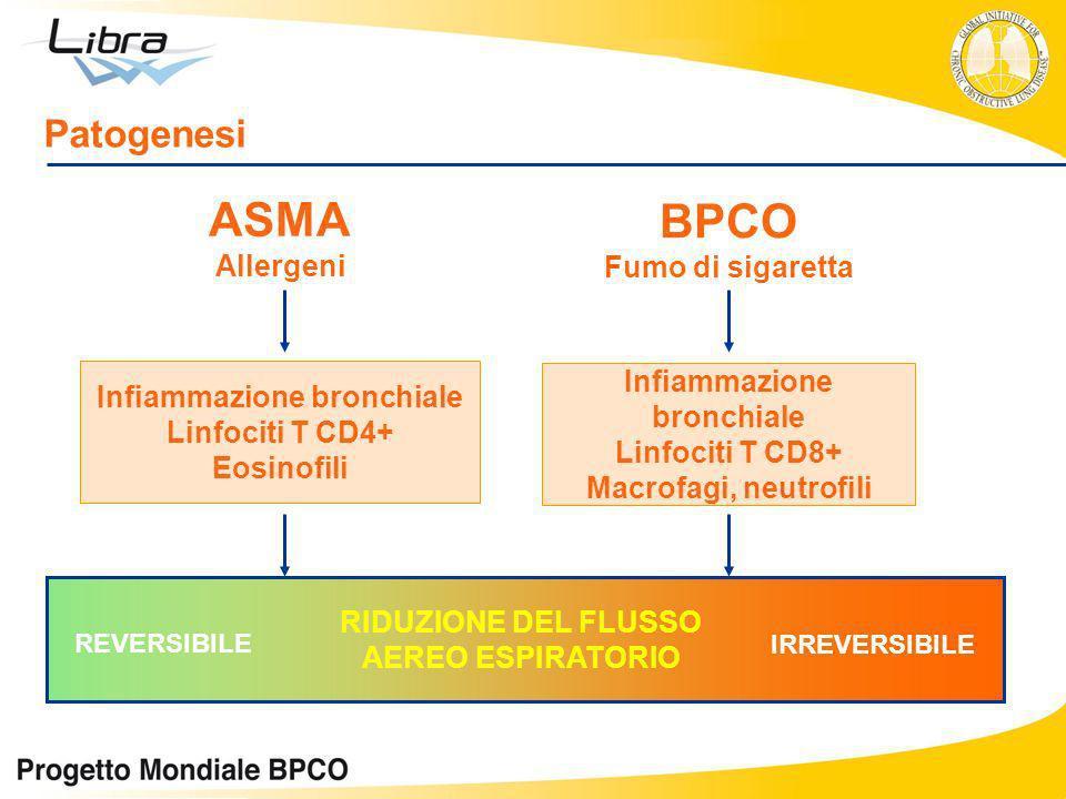 ASMA Allergeni BPCO Fumo di sigaretta Infiammazione bronchiale Linfociti T CD4+ Eosinofili Infiammazione bronchiale Linfociti T CD8+ Macrofagi, neutro