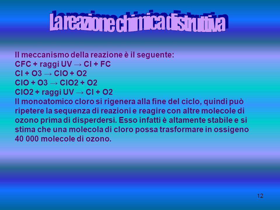12 Il meccanismo della reazione è il seguente: CFC + raggi UV Cl + FC Cl + O3 ClO + O2 ClO + O3 ClO2 + O2 ClO2 + raggi UV Cl + O2 Il monoatomico cloro