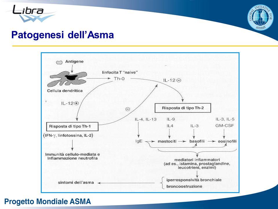 Patogenesi dellAsma
