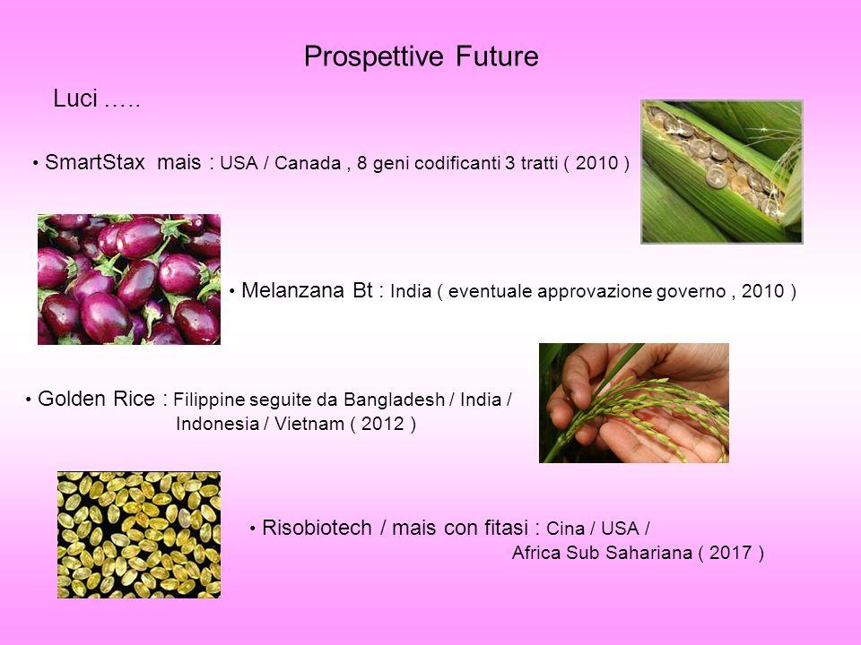 Prospettive Future Luci ….. SmartStax mais : USA / Canada, 8 geni codificanti 3 tratti ( 2010 ) Melanzana Bt : India ( eventuale approvazione governo,