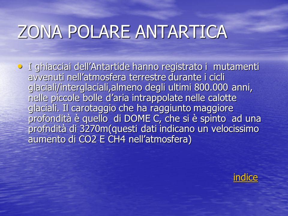 ZONA POLARE ANTARTICA I ghiacciai dellAntartide hanno registrato i mutamenti avvenuti nellatmosfera terrestre durante i cicli glaciali/interglaciali,a