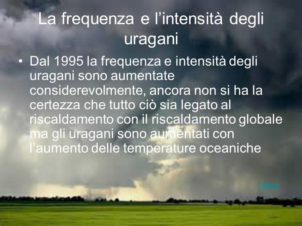 La frequenza e lintensità degli uragani Dal 1995 la frequenza e intensità degli uragani sono aumentate considerevolmente, ancora non si ha la certezza