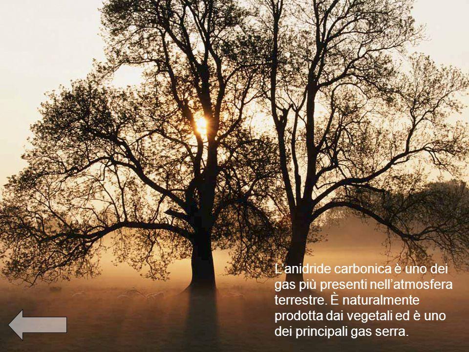 Lanidride carbonica è uno dei gas più presenti nellatmosfera terrestre.