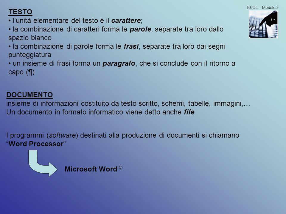 DOCUMENTO insieme di informazioni costituito da testo scritto, schemi, tabelle, immagini,… Un documento in formato informatico viene detto anche file