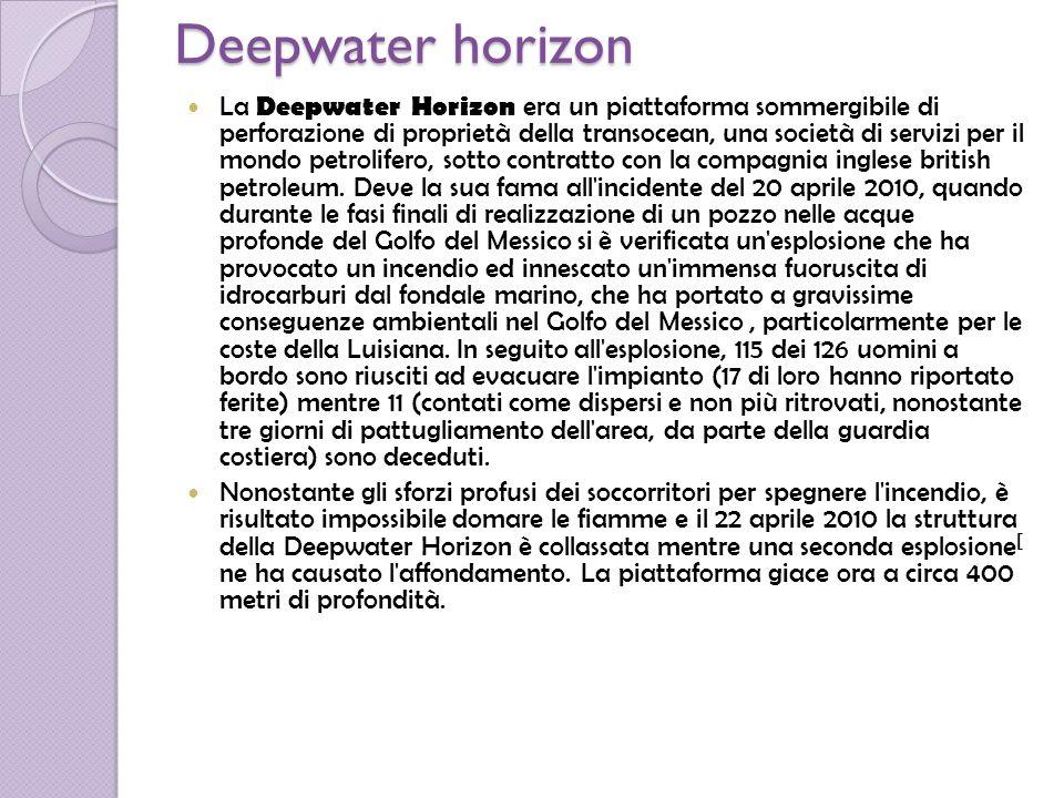 Storia della deepwater horizon Originariamente il progetto e la costruzione della Deepwater Horizon venne commissionato alla Hyundai Heavy Industries, dalla R&D Falcon, la sua costruzione cominciò nel dicembre del 1998 e venne consegnata nel 2001 alla Transocean che nel frattempo aveva assorbito l R&D Falcon.La Deepwater Horizon venne realizzata sulla base della piattaforma Deepwater Nautilis, sua progenitrice ma meno evoluta perché non capace di operare in posizionamento dinamico, caratteristica molto importante per poter operare nelle acque burrascose del Golfo del Messico.