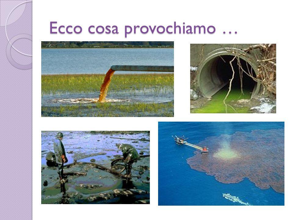 LEUTROFIZZAZIONE LEUTROFIZZAZIONE Il termine eutrofizzazione deriva dal greco eutrophia.Miliardi di litri di prodotti inquinanti che finiscono nelle acque pubbliche,con il risultato che a causa di questa concimazione forzata le alghe e le piante dei fiumi e dei laghi aumentano in gran copia,consumando ossigeno durante la notte,poi muoiono e marciscono aggravando lo stato dellinquinamento,sottraendo ossigeno alle creature acquatiche e provocandone la morte.