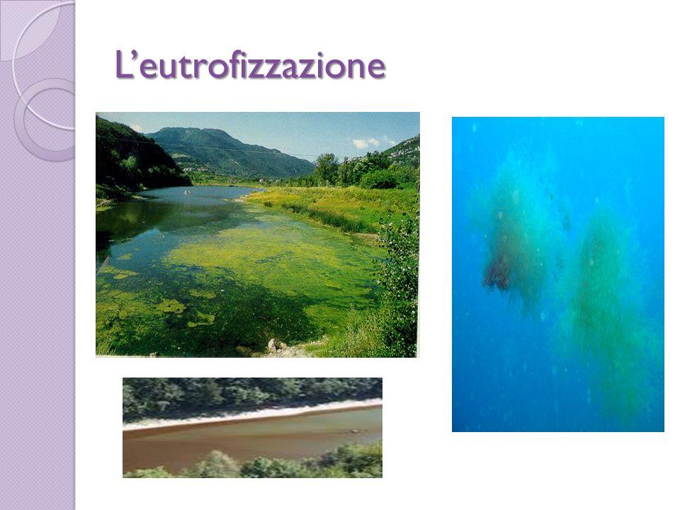 Inquinamento atmosferico L atmosfera è formata da alcuni gas come lozono,lazoto,lanidride carbonica,il vapore acque e largon.