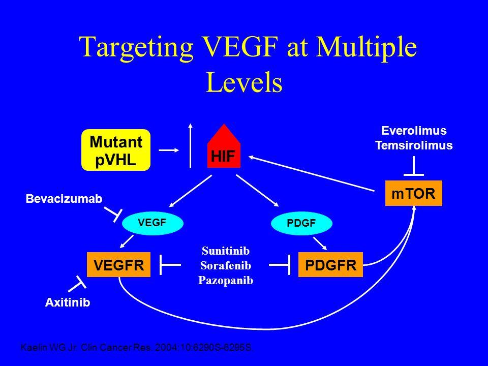VEGF VEGFR Everolimus Temsirolimus Bevacizumab HIF Kaelin WG Jr. Clin Cancer Res. 2004;10:6290S-6295S. Mutant pVHL PDGF PDGFR mTOR Sunitinib Sorafenib