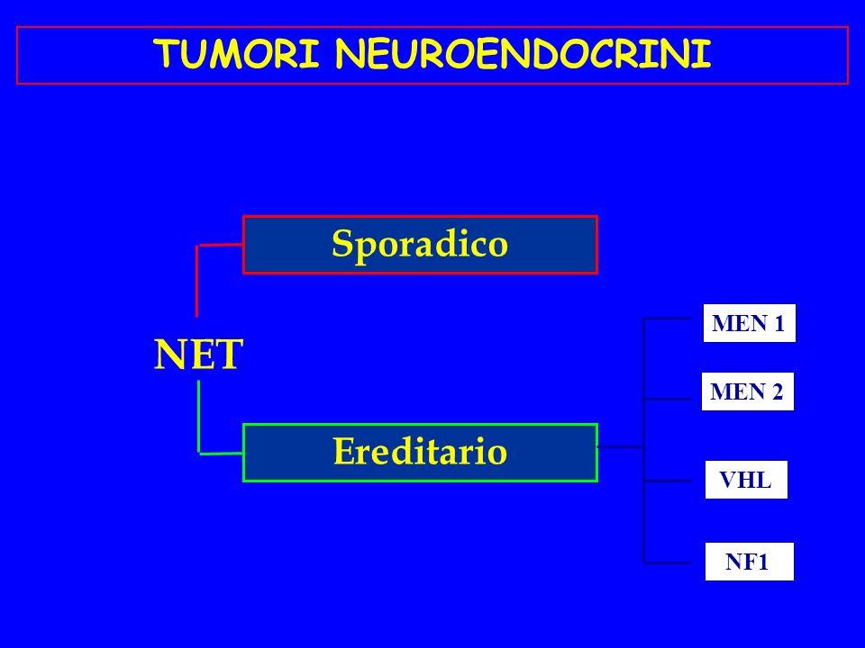 20 % apparato respiratorio 75% nel sistema gastro- entero-pancreatico LOCALIZZAZIONE DEI TUMORI NEUROENDOCRINI