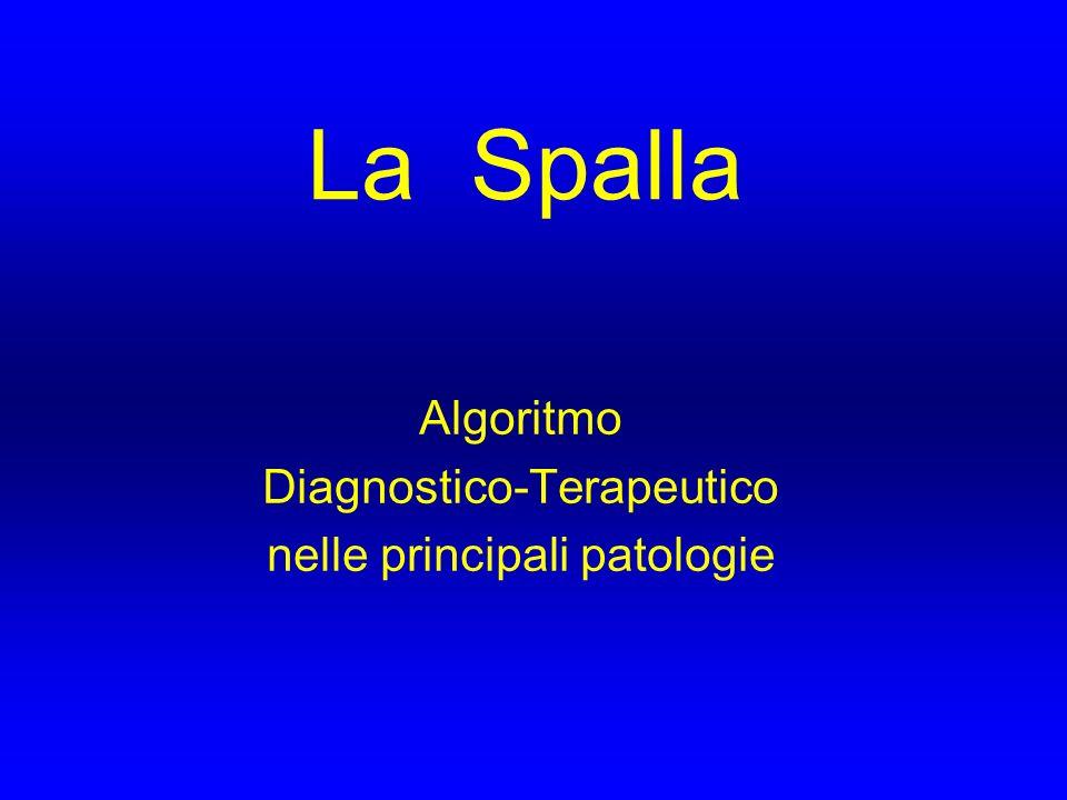 ANATOMIA LA SPALLA E` COSTITUITA DA 3 ARTICOLAZIONI DIARTRODIALI : -GLENO-OMERALE -ACROMION-CLAVEARE -STERNO-CLAVEARE LE ULTIME DUE, IN COMBINAZIONE CON GLI SPAZI MIOFASCIALI TRA SCAPOLA E TORACE, FORMANO L` ARTICOLAZIONE SCAPOLO-TORACICA