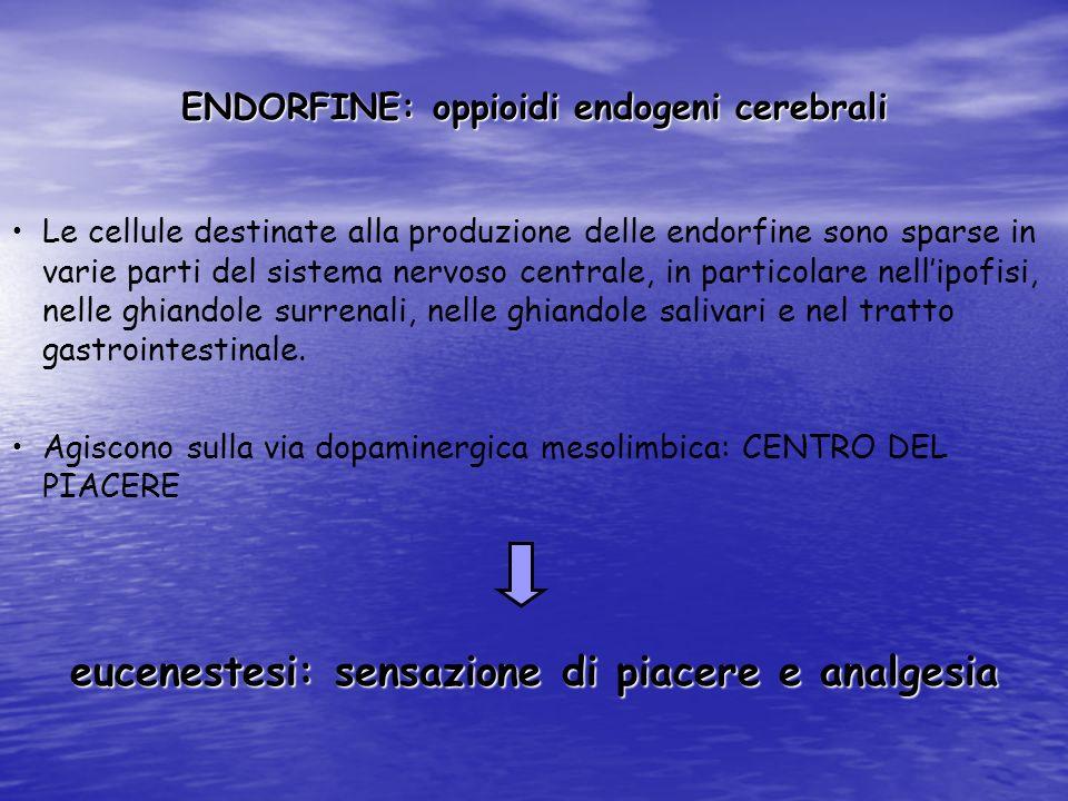 ENDORFINE: oppioidi endogeni cerebrali Le cellule destinate alla produzione delle endorfine sono sparse in varie parti del sistema nervoso centrale, i