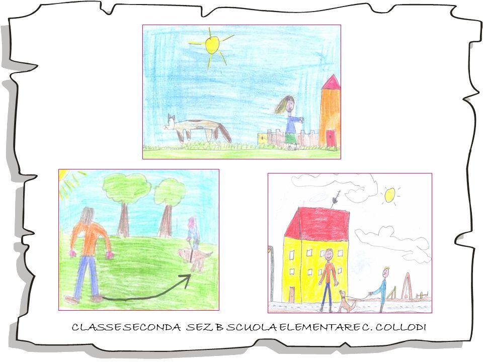 CLASSE SECONDA SEZ B SCUOLA ELEMENTARE C. COLLODI