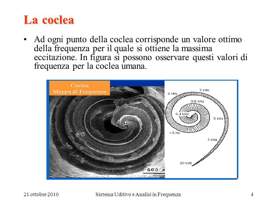 21 ottobre 2010Sistema Uditivo e Analisi in Frequenza4 Lacoclea La coclea Ad ogni punto della coclea corrisponde un valore ottimo della frequenza per