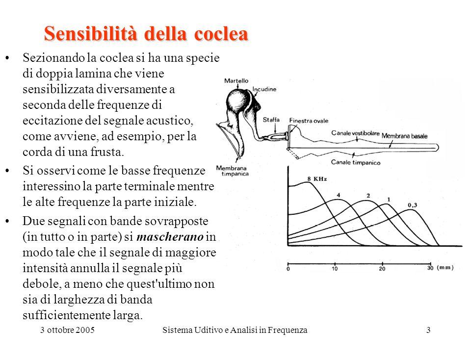 3 ottobre 2005Sistema Uditivo e Analisi in Frequenza4 Lacoclea La coclea Ad ogni punto della coclea corrisponde un valore ottimo della frequenza per il quale si ottiene la massima eccitazione.