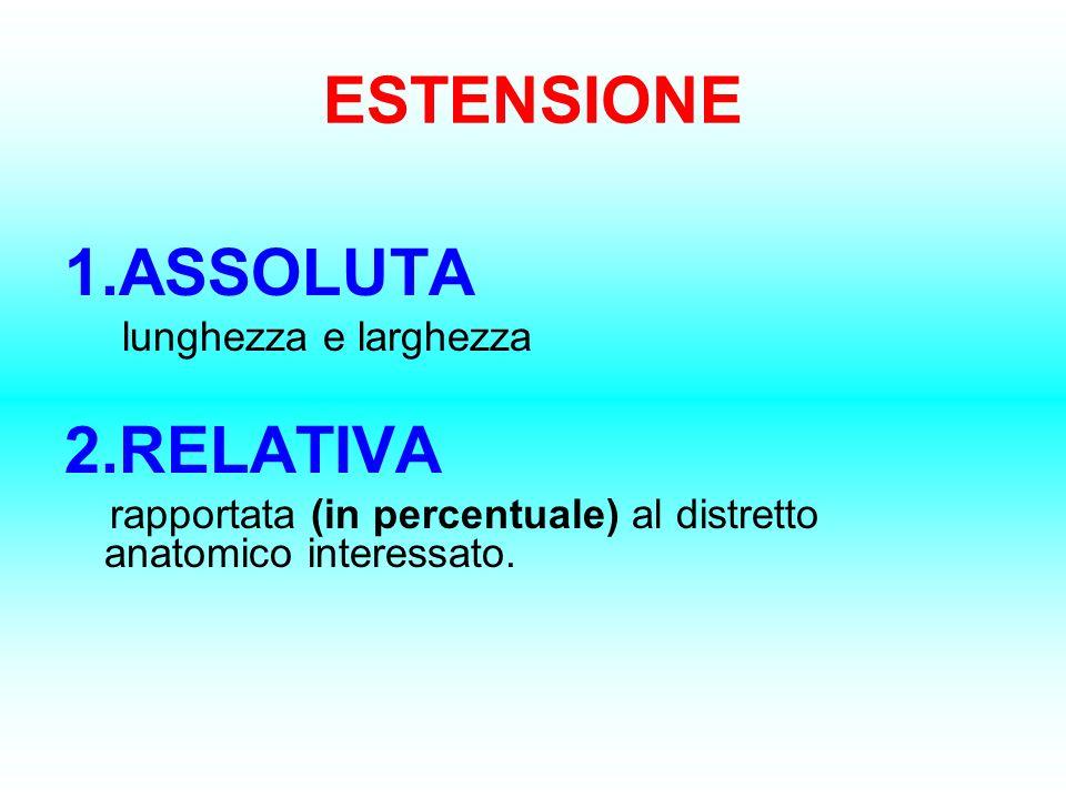 ESTENSIONE 1.ASSOLUTA lunghezza e larghezza 2.RELATIVA rapportata (in percentuale) al distretto anatomico interessato.