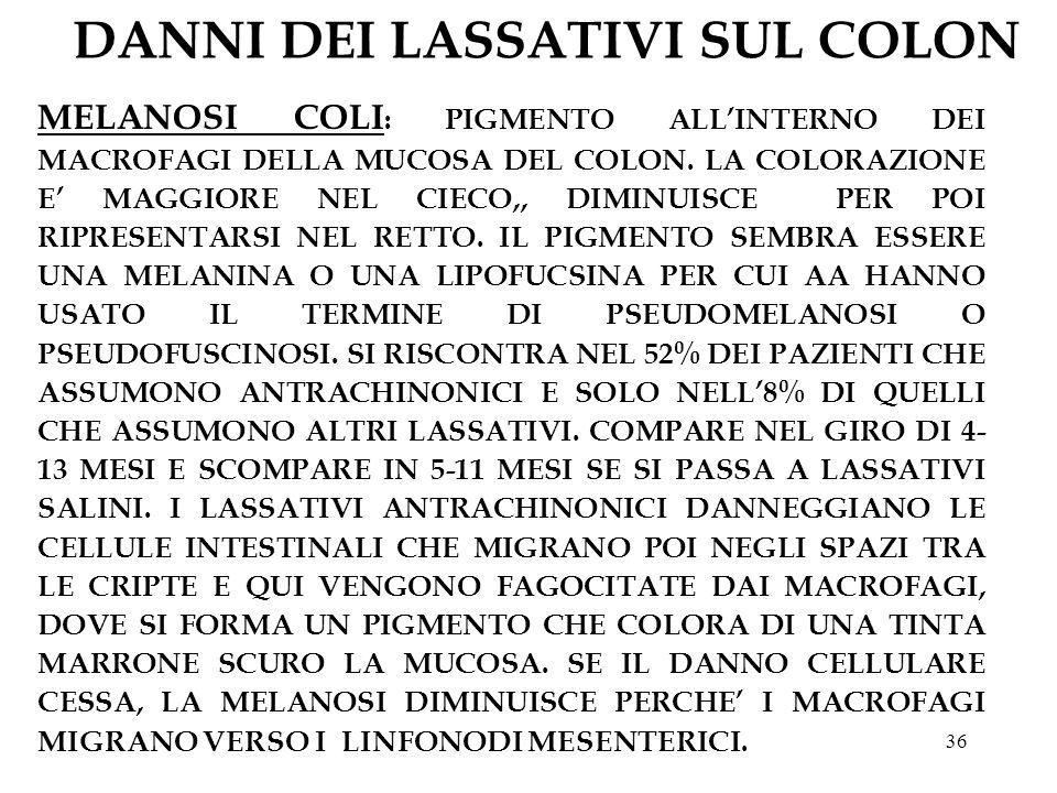36 DANNI DEI LASSATIVI SUL COLON MELANOSI COLI : PIGMENTO ALLINTERNO DEI MACROFAGI DELLA MUCOSA DEL COLON.