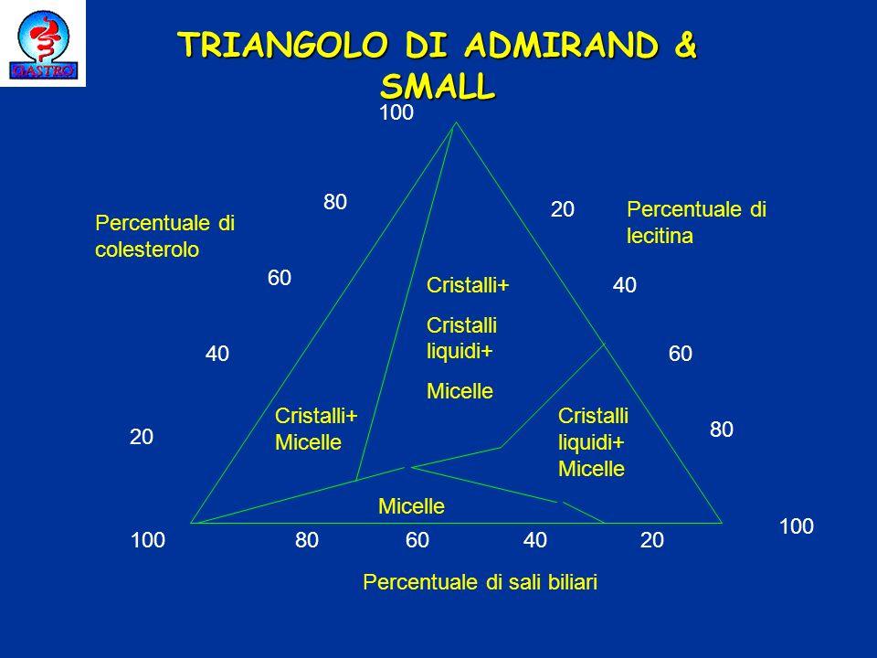 Percentuale di colesterolo Percentuale di lecitina Percentuale di sali biliari 20 40 60 80 100 20 40 60 80 100 20406080100 Cristalli+ Cristalli liquid
