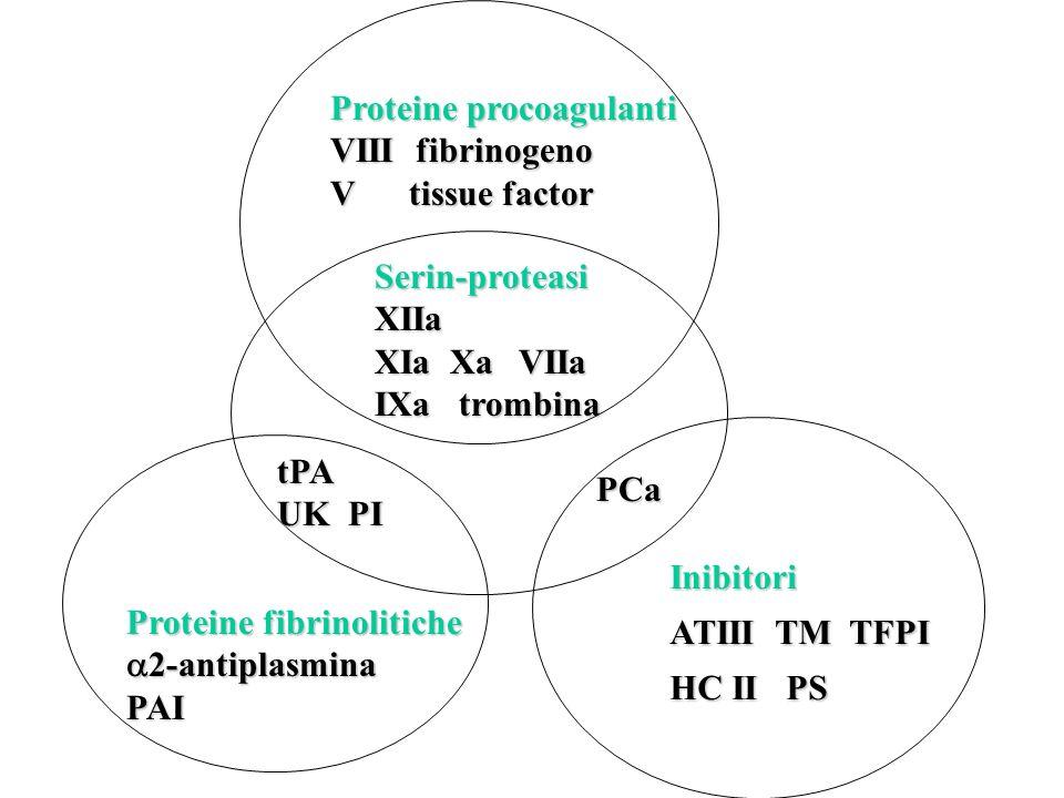 Emofilia A Difetto quantitativo o qualitativo del fattore VIII Gene sul cromosoma X recessivo Alta frequenza di mutazioni (1/3 degli emofilici nasce in famiglie sane) >>>storia familiare negativa e poco significativa