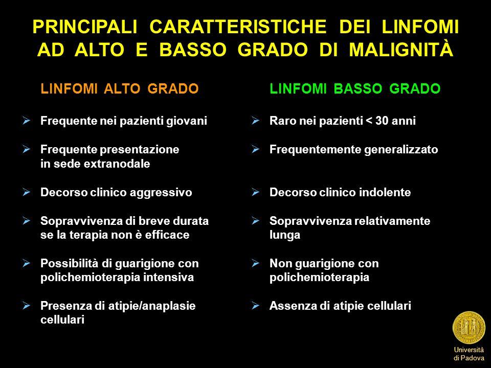 Università di Padova PRINCIPALI CARATTERISTICHE DEI LINFOMI AD ALTO E BASSO GRADO DI MALIGNITÀ LINFOMI ALTO GRADOLINFOMI BASSO GRADO Frequente nei paz