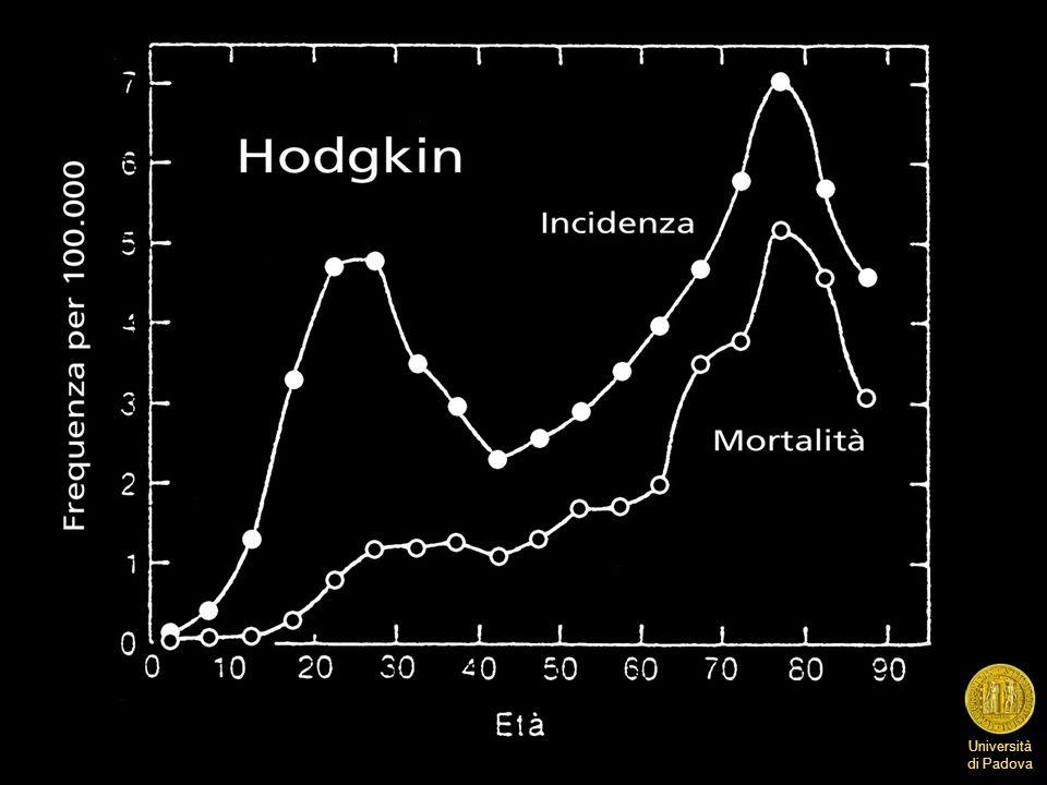 Università di Padova Rappresentazione delle regioni linfonodali in addome che mostra la demarcazione fra stadio III1 (interessamento della parte alta delladdome: milza, linfonodi dellilo splenico, ilo epatico e asse celiaco), e III2 (interessamento dei linfonodi più bassi: paraortici, iliaci, inguinali).