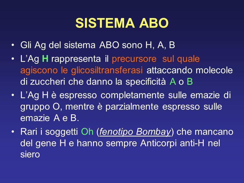 COMPATIBILITA ABO Il sistema ABO è lunico in cui gli anticorpi sono sempre presenti nel siero indipendentemente da una precedente esposizione ai corrispondenti Ag (anticorpi naturali) La trasfusione di sangue ABO incompatibile può causare la sindrome emolitica acuta