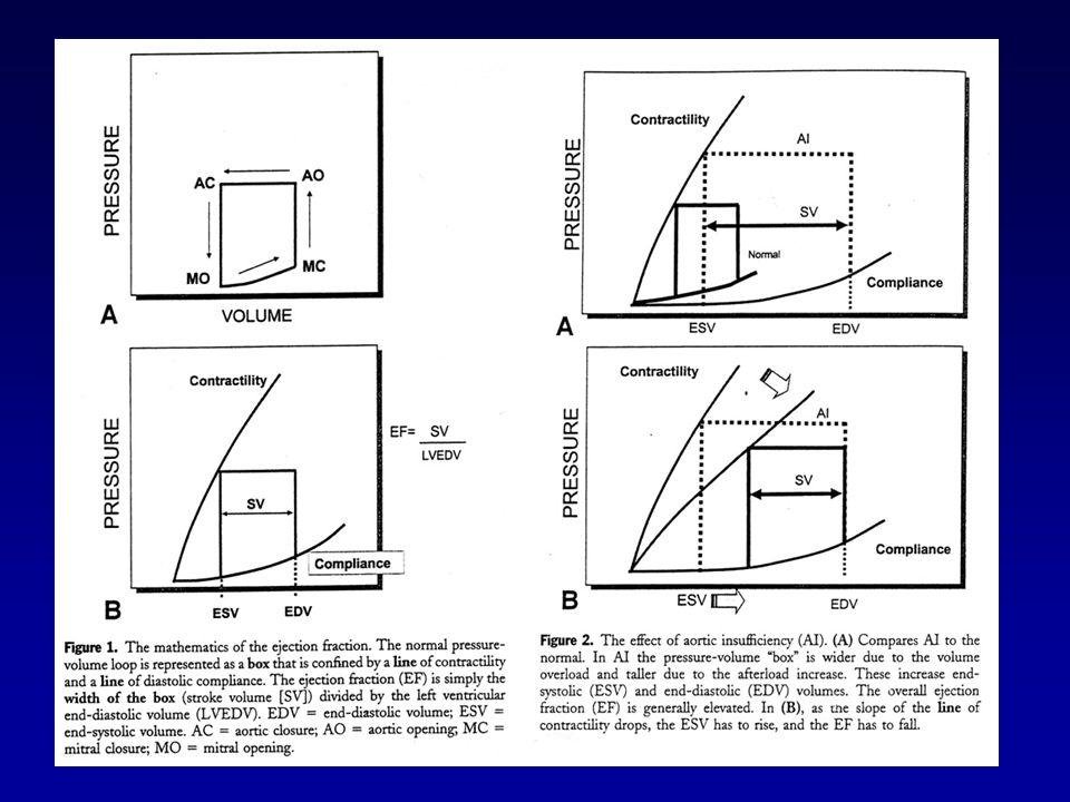 Conclusioni -Il metodo clinico strumentale è fondamentale per la comprensione del processo fisiopatologico nei pazienti con insufficienza aortica.