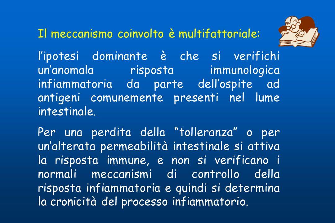 Il meccanismo coinvolto è multifattoriale: lipotesi dominante è che si verifichi unanomala risposta immunologica infiammatoria da parte dellospite ad antigeni comunemente presenti nel lume intestinale.