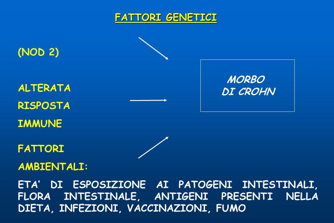 FATTORI GENETICI (NOD 2) ALTERATA RISPOSTA IMMUNE MORBO DI CROHN FATTORI AMBIENTALI: ETA DI ESPOSIZIONE AI PATOGENI INTESTINALI, FLORA INTESTINALE, AN