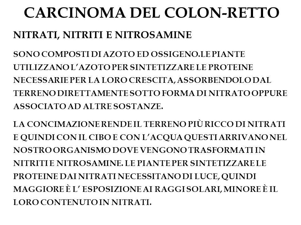 CARCINOMA DEL COLON-RETTO NITRATI, NITRITI E NITROSAMINE SONO COMPOSTI DI AZOTO ED OSSIGENO.LE PIANTE UTILIZZANO LAZOTO PER SINTETIZZARE LE PROTEINE N