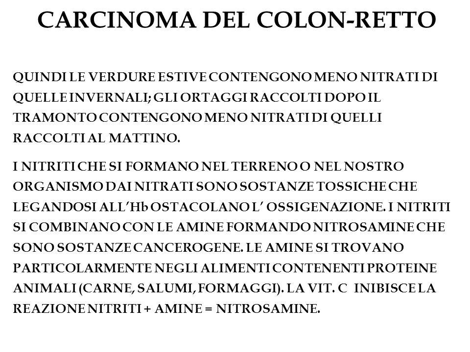 CARCINOMA DEL COLON-RETTO QUINDI LE VERDURE ESTIVE CONTENGONO MENO NITRATI DI QUELLE INVERNALI; GLI ORTAGGI RACCOLTI DOPO IL TRAMONTO CONTENGONO MENO