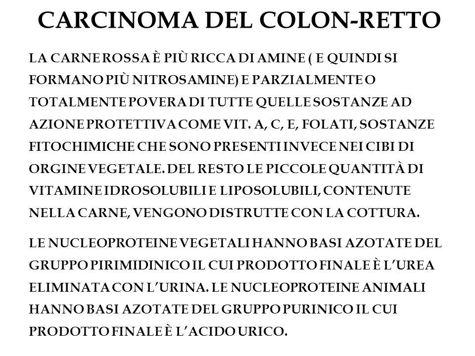 CARCINOMA DEL COLON-RETTO LA CARNE ROSSA È PIÙ RICCA DI AMINE ( E QUINDI SI FORMANO PIÙ NITROSAMINE) E PARZIALMENTE O TOTALMENTE POVERA DI TUTTE QUELL
