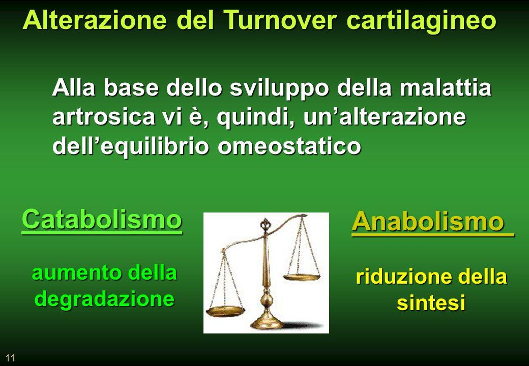 11 Alla base dello sviluppo della malattia artrosica vi è, quindi, unalterazione dellequilibrio omeostatico aumento della degradazione riduzione della sintesi Alterazione del Turnover cartilagineo Catabolismo Anabolismo