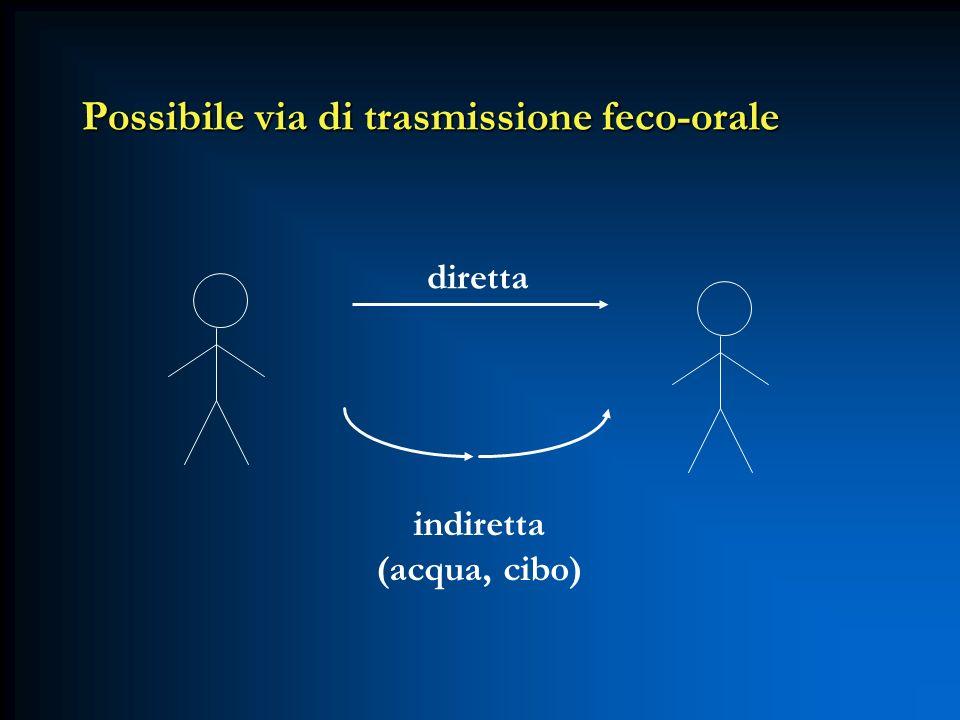 Possibile via di trasmissione feco-orale diretta indiretta (acqua, cibo)