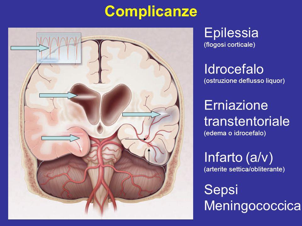 Altre complicanze Deficit neurologici focali Ottavo nc Terzo nc Afasia Emiparesi Compromissione cognitiva Sistemiche Insufficienza cardiaca (endocardite/miocardite) Iponatremia (SIADH) CID, sindrome di Waterhouse-Friderichsen, Insufficienza renale acuta, polmone da shock