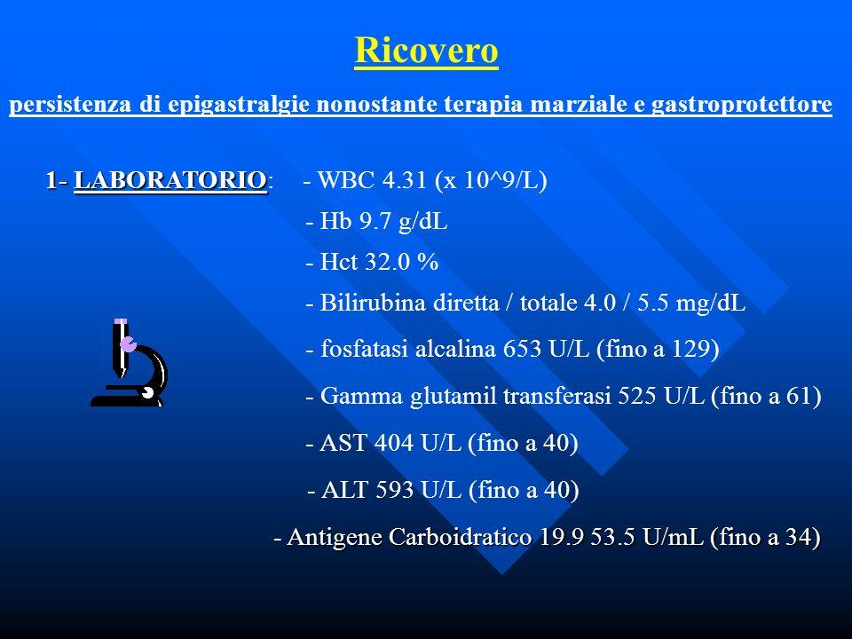 Ricovero persistenza di epigastralgie nonostante terapia marziale e gastroprotettore 1- LABORATORIO 1- LABORATORIO: - WBC 4.31 (x 10^9/L) - Hb 9.7 g/d
