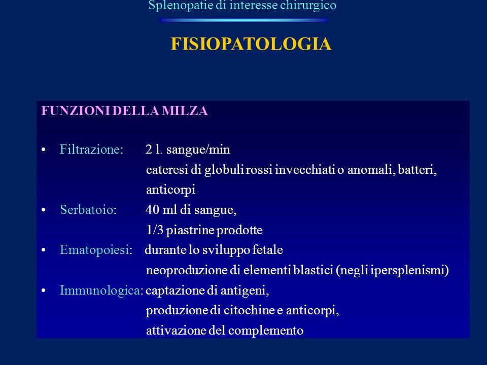 FISIOPATOLOGIA FUNZIONI DELLA MILZA Filtrazione: 2 l. sangue/min cateresi di globuli rossi invecchiati o anomali, batteri, anticorpi Serbatoio: 40 ml