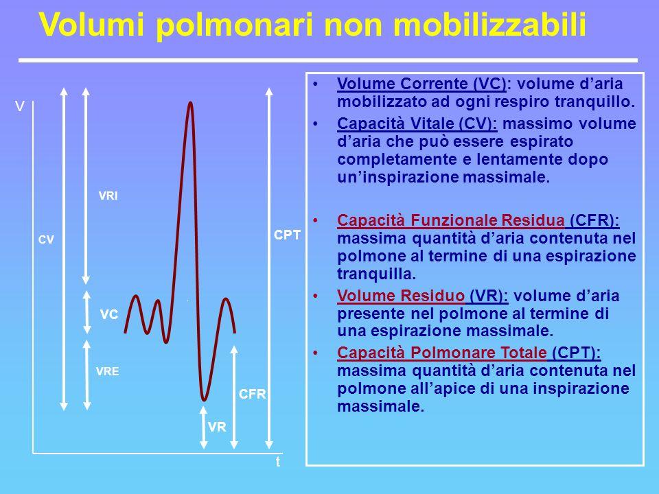 CV VRI VRE CPT VR CFR VC Volume Corrente (VC): volume daria mobilizzato ad ogni respiro tranquillo. Capacità Vitale (CV): massimo volume daria che può