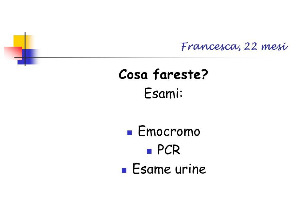 Francesca, 22 mesi Cosa fareste? Esami: Emocromo PCR Esame urine