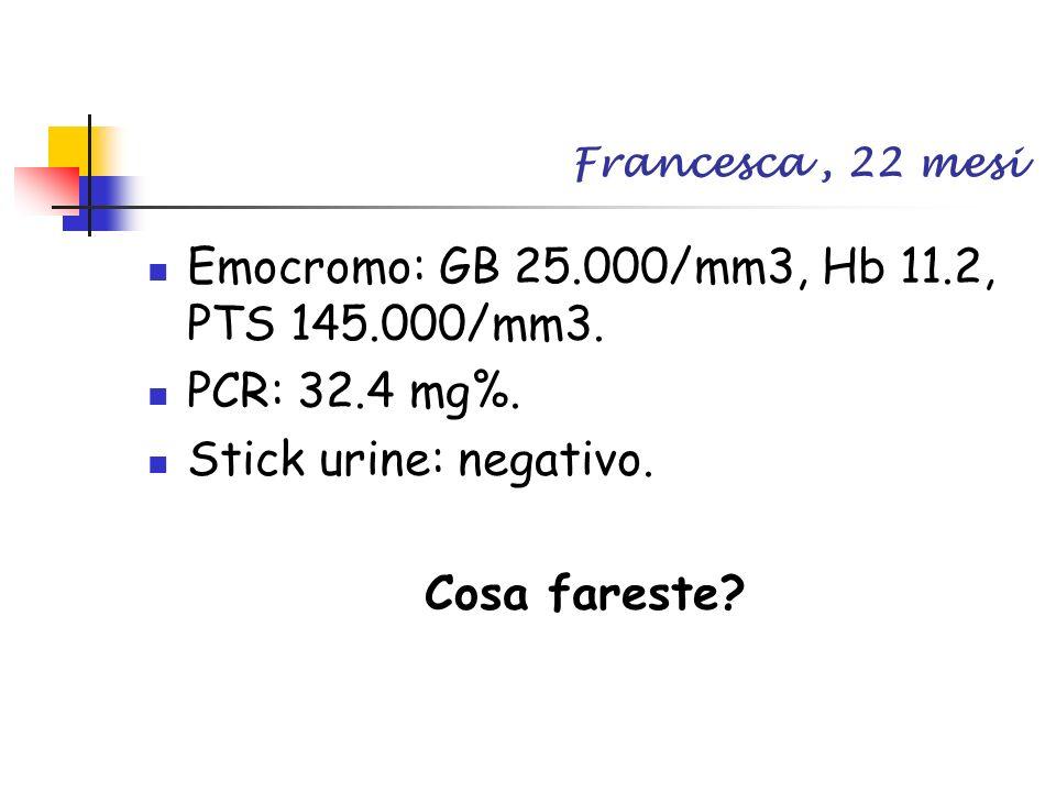 Francesca, 22 mesi Emocromo: GB 25.000/mm3, Hb 11.2, PTS 145.000/mm3. PCR: 32.4 mg%. Stick urine: negativo. Cosa fareste?