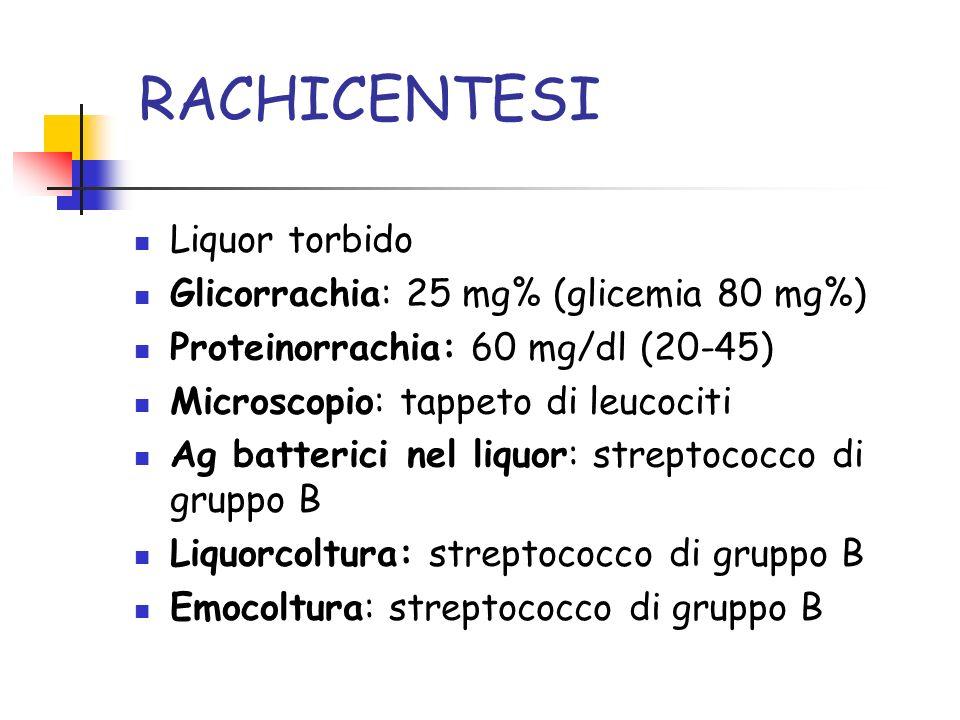 RACHICENTESI Liquor torbido Glicorrachia: 25 mg% (glicemia 80 mg%) Proteinorrachia: 60 mg/dl (20-45) Microscopio: tappeto di leucociti Ag batterici nel liquor: streptococco di gruppo B Liquorcoltura: streptococco di gruppo B Emocoltura: streptococco di gruppo B