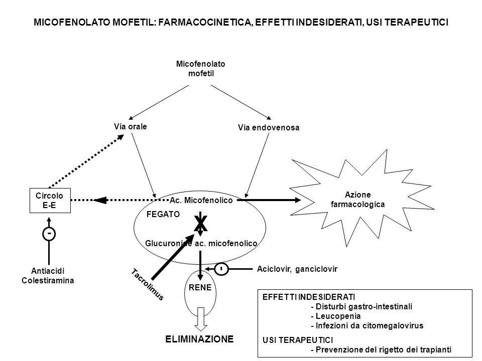 MICOFENOLATO MOFETIL: FARMACOCINETICA, EFFETTI INDESIDERATI, USI TERAPEUTICI Micofenolato mofetil Ac.