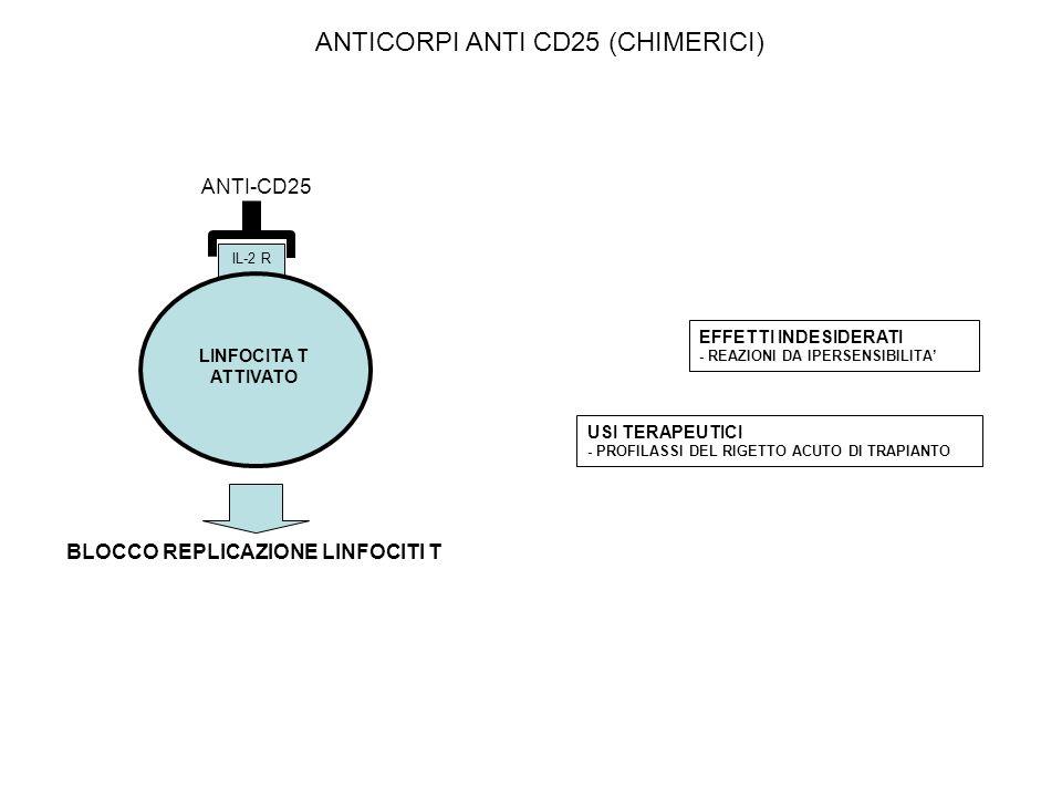 ANTI-CD25 IL-2 R LINFOCITA T ATTIVATO BLOCCO REPLICAZIONE LINFOCITI T EFFETTI INDESIDERATI - REAZIONI DA IPERSENSIBILITA USI TERAPEUTICI - PROFILASSI DEL RIGETTO ACUTO DI TRAPIANTO ANTICORPI ANTI CD25 (CHIMERICI)
