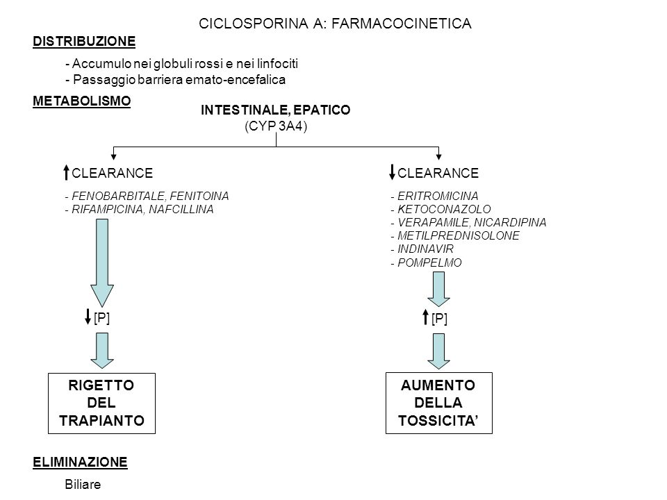 DISTRIBUZIONE - Accumulo nei globuli rossi e nei linfociti - Passaggio barriera emato-encefalica METABOLISMO INTESTINALE, EPATICO (CYP 3A4) CLEARANCE [P] - ERITROMICINA - KETOCONAZOLO - VERAPAMILE, NICARDIPINA - METILPREDNISOLONE - INDINAVIR - POMPELMO - FENOBARBITALE, FENITOINA - RIFAMPICINA, NAFCILLINA RIGETTO DEL TRAPIANTO AUMENTO DELLA TOSSICITA ELIMINAZIONE Biliare