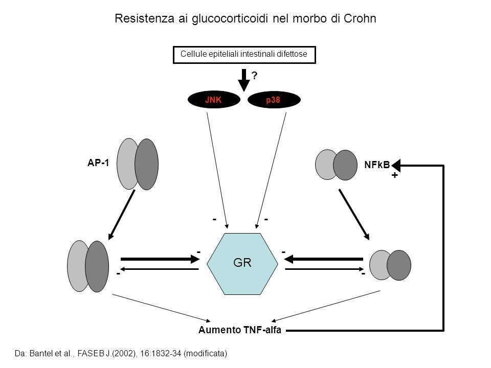 Cellule epiteliali intestinali difettose JNKp38 AP-1 NFkB ? GR - - - - - - Aumento TNF-alfa Resistenza ai glucocorticoidi nel morbo di Crohn Da: Bante