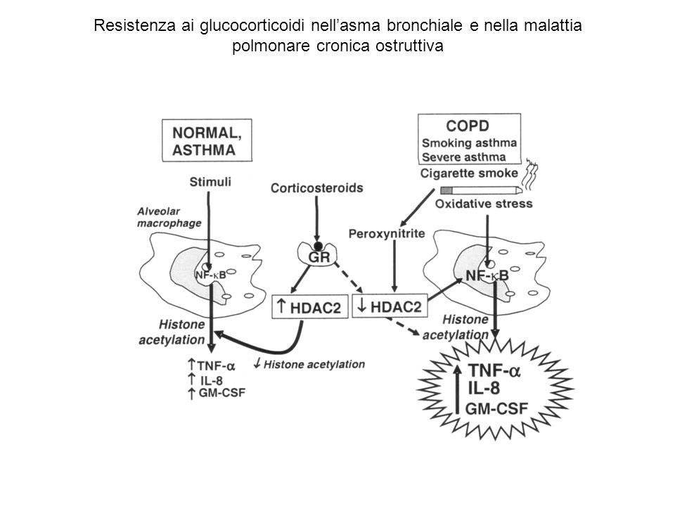 Resistenza ai glucocorticoidi nellasma bronchiale e nella malattia polmonare cronica ostruttiva