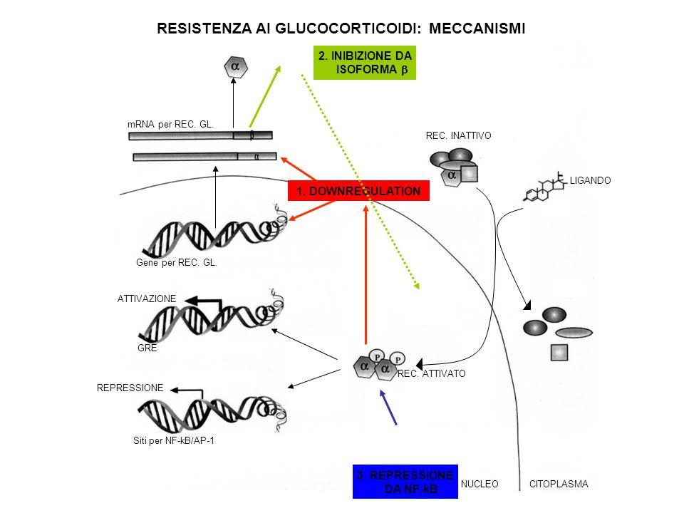 LIGANDO REC. ATTIVATO REC. INATTIVO REPRESSIONE ATTIVAZIONE Gene per REC. GL. NUCLEOCITOPLASMA 2. INIBIZIONE DA ISOFORMA 3. REPRESSIONE DA NF-kB GRE S
