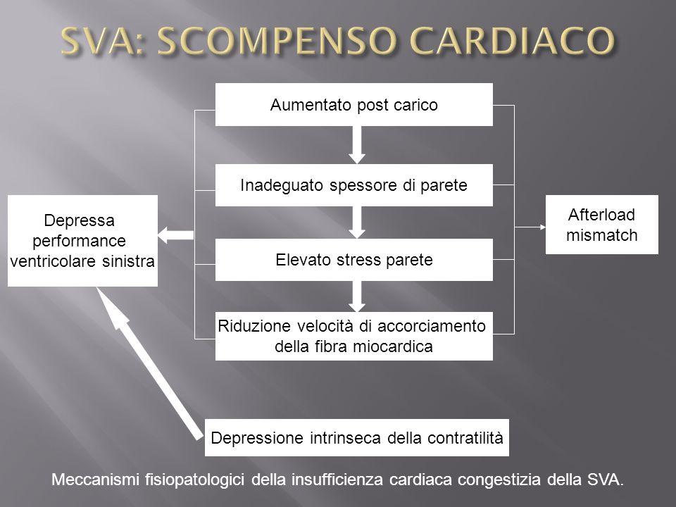 Aumentato post carico Inadeguato spessore di parete Elevato stress parete Riduzione velocità di accorciamento della fibra miocardica Depressa performa